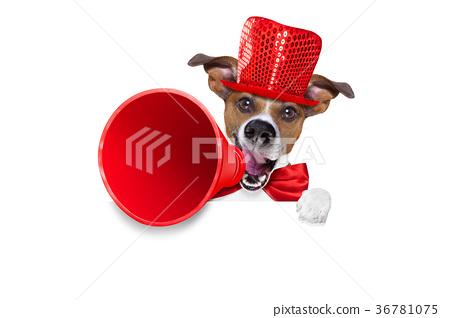 dog sale megaphone 36781075