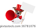 dog, megaphone, sale 36781076