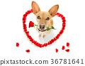 happy valentines dog 36781641