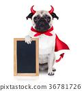 halloween devil dog 36781726