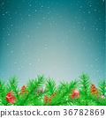 雪 圣诞节 圣诞 36782869