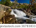 加州 加利福尼亞 美國 36783833
