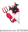 halloween devil dog 36783969