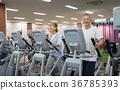 senior, gym, gymnasium 36785393