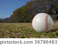 棒球 球 绿色 36786463
