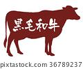奶牛 牲口 牛 36789237