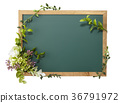 blackboard, flower, flowers 36791972