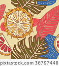 tropical, background, leaf 36797448