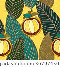 tropical, background, leaf 36797450
