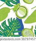 tropical, background, leaf 36797457
