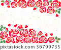 rose backdrop background 36799735