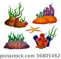 Underwater ocean reefs or aquarium corals 36805462