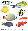 Underwater golden fishes and small sea fauna 36805463