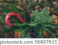 Candy Cane on a Christmas tree 36807615