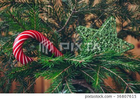 Candy Cane on a Christmas tree 36807615