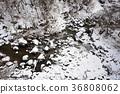 Taking pictures of the snow scene in the valley of Yakumo-cho, Yakumo-cho, Hokkaido 36808062