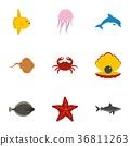 sea animal flat 36811263
