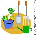 ทำสวน,สวนครัว,ผัก 36813373
