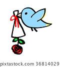 조류 사랑의 선물 36814029