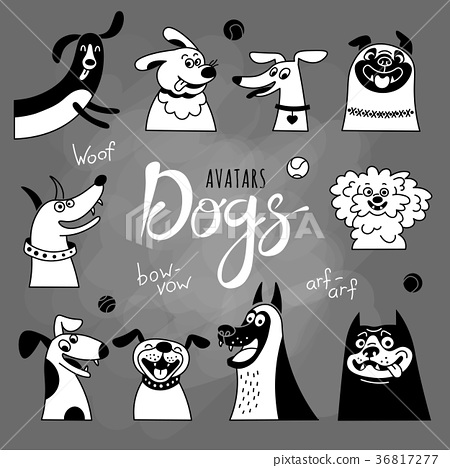 Avatar dogs. Funny lap-dog, happy pug, cheerful 36817277