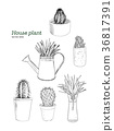 set of house plant pot, hand draw sketch vector. 36817391