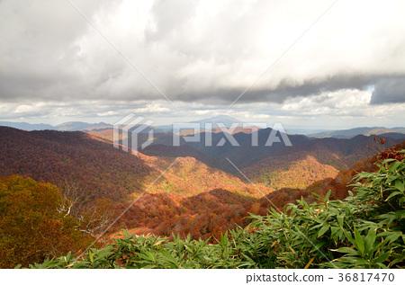 二쯔森 정상에서 시라 카미 산지의 산맥과 이와키 산의 단풍 36817470