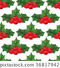 Christmas berry decorative leaves holly branches 36817942