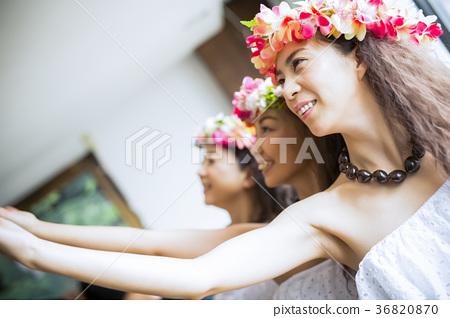 草裙舞者舞蹈 36820870