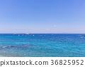 卡普里藍海3 36825952