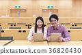 นักศึกษามหาวิทยาลัยกำลังเรียนโดยใช้คอมพิวเตอร์แท็บเล็ต 36826430