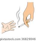 烟草 香烟 雪茄 36829046