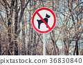 Sign prohibiting dog walking 36830840