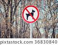 Sign prohibiting dog walking 36830840