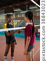 Two female players shaking hands with each other 36843023