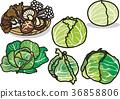 蟹味菇 椎茸 金針菇 36858806