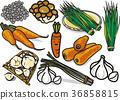 滑菇 韭菜 胡萝卜 36858815
