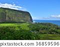 Waipio Valley, Island of Hawaii 36859596