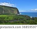 Waipio Valley, Island of Hawaii 36859597