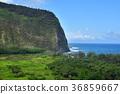 Waipio Valley, Island of Hawaii 36859667