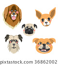 Dogs Avatar Collection 36862002