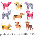 Dogs of Different Breeds Icons Vector Illustration 36866735