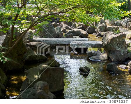 Dai Yokogawa水上乐园 36871037