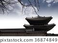 담, 지붕, 하늘 36874849