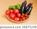 西紅柿 番茄 小西紅柿 36875248