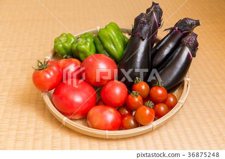 番茄 西紅柿 小西紅柿 36875248