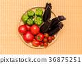 番茄 西紅柿 小西紅柿 36875251