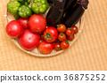 番茄 西紅柿 小西紅柿 36875252
