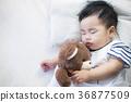 Newborn baby sleep with teddy bear 36877509