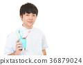 male, man, dentist 36879024