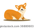 Cute Smiling Corgi Icon Vector Illustration 36880603